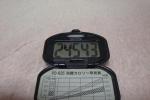 100313-060万歩計(縮小)