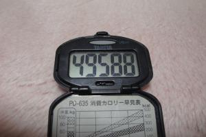 100314-040万歩計(縮小)