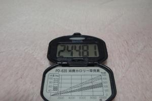100320-060万歩計(縮小)
