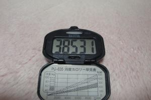 100321-040万歩計(縮小)