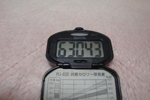 100322-060万歩計(縮小)