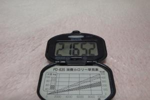100326-050万歩計(縮小)