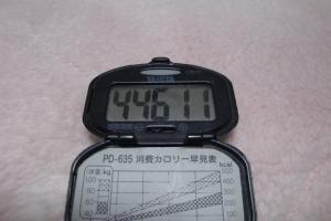 100327-060万歩計(縮小)