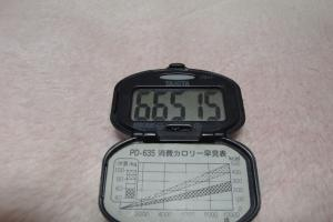 100328-050万歩計(縮小)