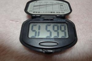 100328-051逆さ万歩計(縮小)