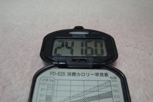 101204-060万歩計(縮小)