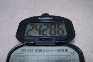 101210-060万歩計(縮小)