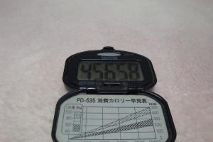 101219-050万歩計(縮小)