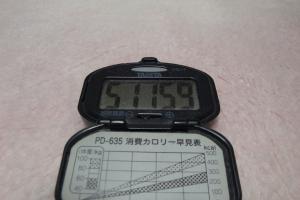 101230-050万歩計(縮小)