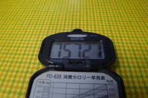 101231-006万歩計(縮小)