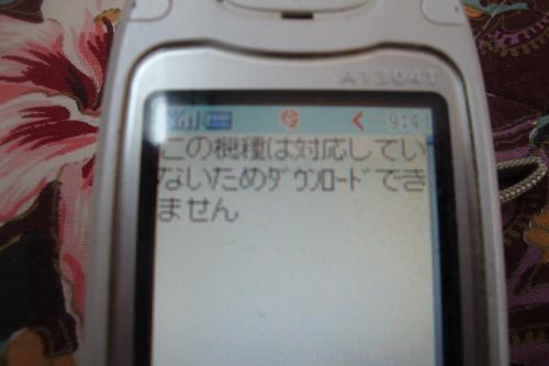 110101-002無理(縮小)