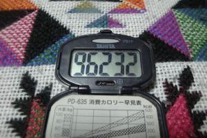 110101-109万歩計(縮小)