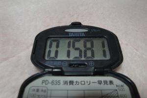 110102-105万歩計(縮小)