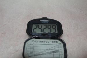 110103-060万歩計(縮小)