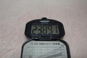 110108-060万歩計300(縮小)