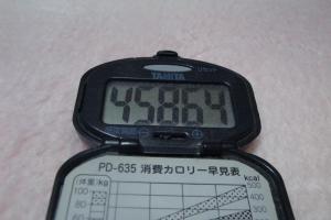 110109-050万歩計300(縮小)