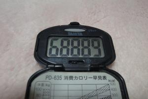 110110-060万歩計300(縮小)