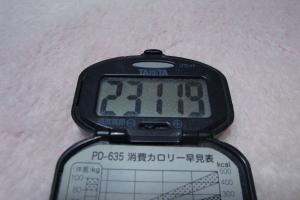 110115-050万歩計300(縮小)