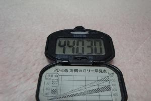 110116-050万歩計300(縮小)
