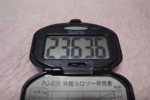 110122-040万歩計(縮小)