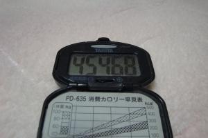 110123-040万歩計(縮小)