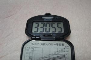 110127-050万歩計(縮小)