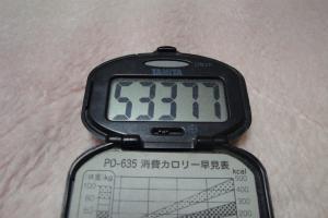 110128-050万歩計(縮小)