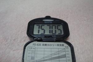 110129-050万歩計(縮小)