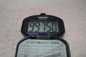 110130-040万歩計(縮小)