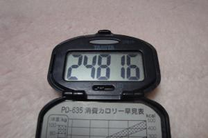 110131-050万歩計(縮小)