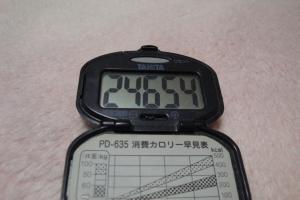 110205-050万歩計(縮小)