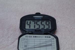 110206-060万歩計(縮小)