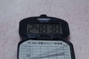 110211-040万歩計(縮小)