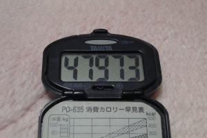 110212-050万歩計(縮小)