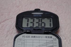 110213-070万歩計(縮小)