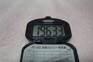 110219-060万歩計(縮小)
