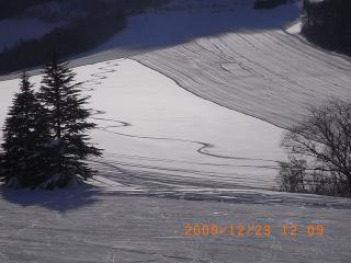RIMG0075_20091223144359.jpg