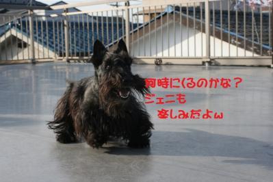 a_20100306005257.jpg