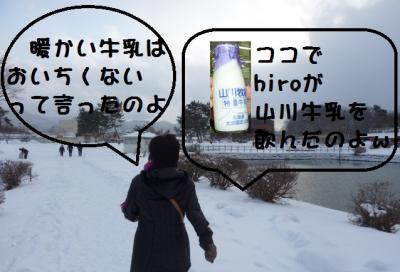 a_20110106163052.jpg