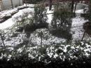 20102雪1