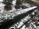 20102雪2