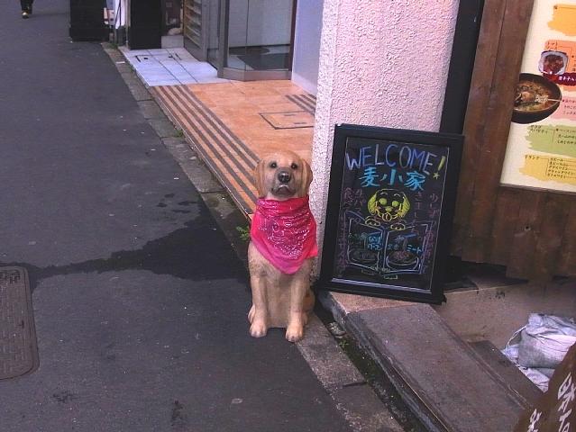 置きものの犬.jpg