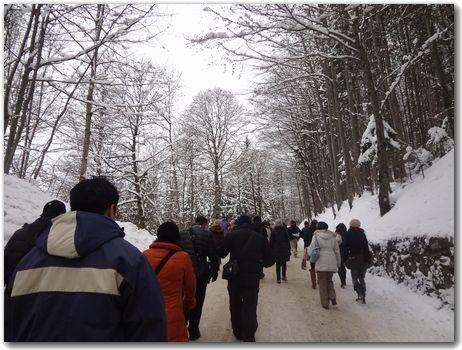 20120213aruki.jpg