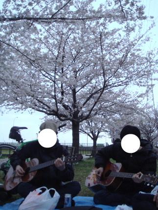 20100404sakura3.jpg
