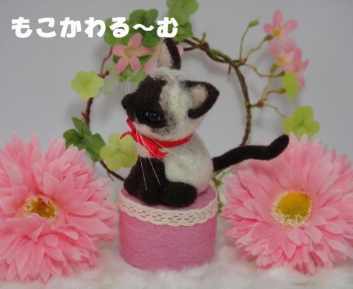 ミニシャム猫2
