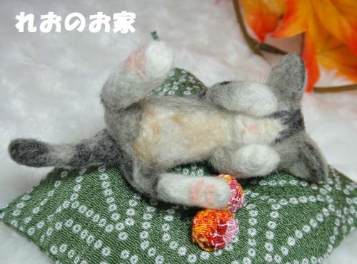 ねんねミニキジトラ1