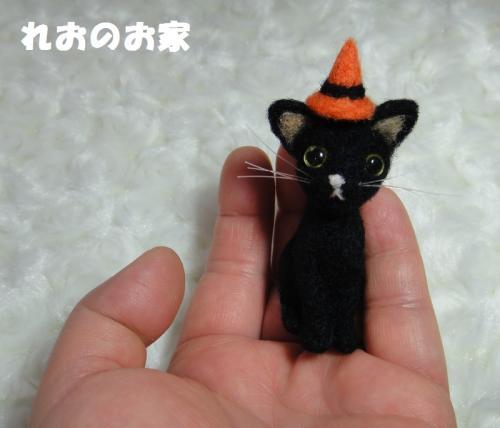 黒猫ハロウィン5
