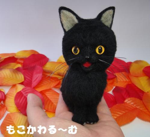 ハロウィン黒猫5