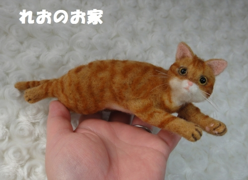 茶トラちゃんちゃんこ5