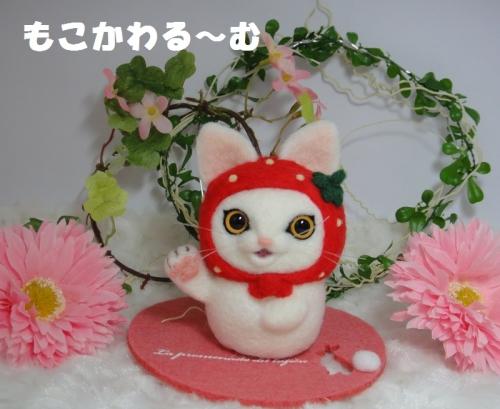 苺まねき白猫1